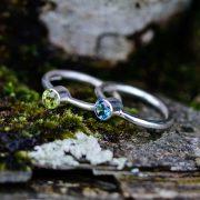 lichen_rings_web